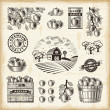 Vintage apple harvest set — Stockvector