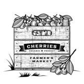 Retro crate of cherries black and white — Stock Vector