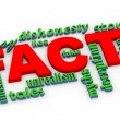 3d facts vs lies wordcloud — Foto Stock