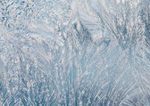 Frost on the window glass — Stock Photo