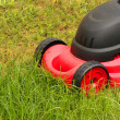Lawnmower mowing the grass — Stok fotoğraf