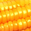 Stock Photo: Closeup view of corn