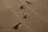 Human traces on sand — Stock Photo
