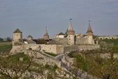The main city landmark - the old fortress — Stock Photo