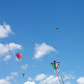 Kites in the sky — Stock Photo