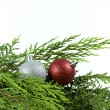 Stock Photo: Christmas Festive Season Decoration Object
