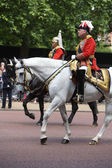 Trooping of the Color, Royal guards in London — Stock Photo