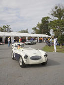 Melbourne Formula One, Austin Healey and other antique racers in 2010 — Stock Photo