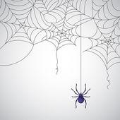 蜘蛛网 — 图库矢量图片