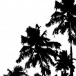 Vettoriale Stock : Palm Tree