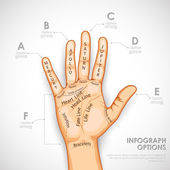 Palmistry Infographics — Stock Vector