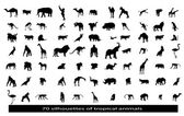 70 silhouettes of the African animals — Stock Vector