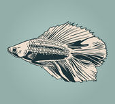 Vector vintage fish — Stock Vector