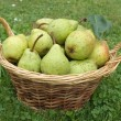 Pear basket - Stock Photo