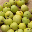 Apples - malus domestica white transparent — Stock Photo