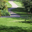 Path through landscaped park — Stock Photo #13143825