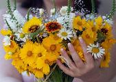 Brazo con flores silvestres — Foto de Stock