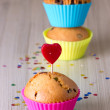 Cute Chocolate Cupcake — Stock Photo #18982807