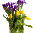 Royalty-Free Stock Photo: Bouquet of spring flowers - tulips and irises