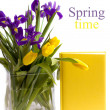 Yellow pad next spring flowers — Stock Photo
