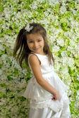 Portret spinnen 5-jarige meisje — Stockfoto