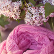 Lilac stripy scarf is in spiral shape. — Stock Photo #25287789