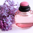 Lilac branch near bottle of perfume — Stock Photo