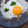 Scrambled eggs from a hen's egg — Stock Photo