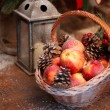 Stock Photo: Fresh red apple with christmas