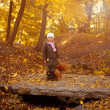 Adorable little girl with autumn — Stock Photo