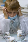 Boy wants to be an orthodontist — Stock Photo