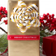 Christmas gift with branch firtree — Stock Photo #35136255