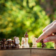 Woman playing chess — Stock Photo #12441802