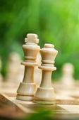Regina e re di scacchi — Foto Stock