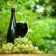 Bottle of wine and fresh green grapes — Stock Photo