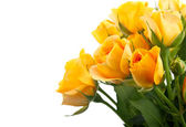 Flowers bouquet — Stock Photo
