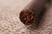 Closeup of cigar — Stock Photo