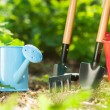 Garden tools — Stock Photo #25067965