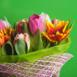 Tulips flowers — Stock Photo
