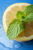 Fresh lemon and mint — Stock Photo