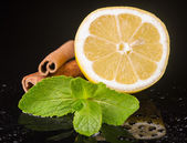 Mint with lemon and cinnamon — Stock Photo
