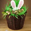 Easter basket, golden eggs. — Stock Photo