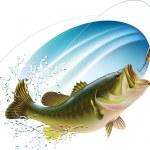 Постер, плакат: Largemouth bass catching a bite
