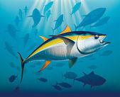 Shoal of yellowfin tuna — Stock Vector