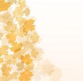 Schöne Herbst Hintergrund mit Ahorn-Blätter — Stockfoto