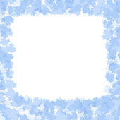 Holiday frame with blue winter leaves — Stock Photo