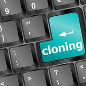 Clonazione pulsante della tastiera sul computer pc — Foto Stock