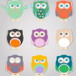 Stok fotoğraf: Set of cute owls