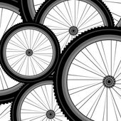 Bicycle wheel set isolated on white — Stock Photo