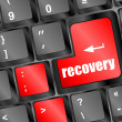 Stock Photo: Key with recovery text on laptop keyboard button